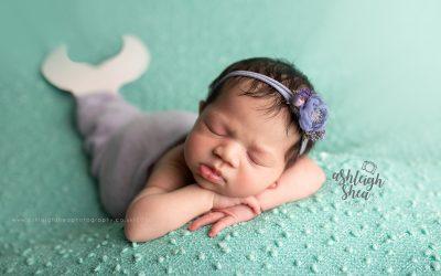 Little Mermaid, Miss Sirena